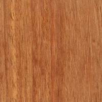timber floor - kempas